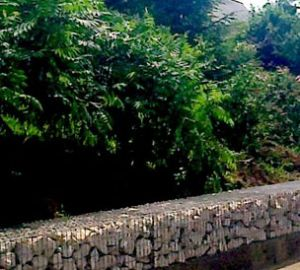 Mur-gabion
